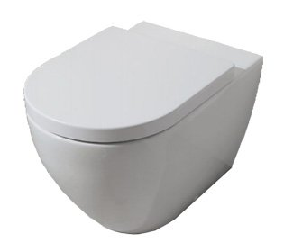 WC with hidden basin